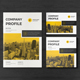 Bundle Company Profile - GraphicRiver Item for Sale