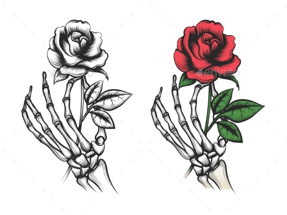 Rose Flower in Human Skeleton Hand - Flowers & Plants Nature