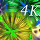 Macro Color 4K 02