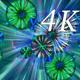Macro Color 4K 04