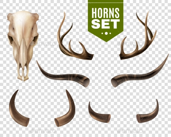 Cow Skull And Horns Set - Animals Characters