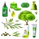 Products Of Tea Tree Set - GraphicRiver Item for Sale
