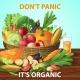 Organic Vegetables Basket Background - GraphicRiver Item for Sale