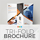 TriFold Brochure Template 02 - GraphicRiver Item for Sale