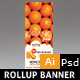 Juice Rollup Banner - GraphicRiver Item for Sale
