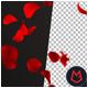 Rose Petals 4K