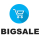 Bigsale – Responsive Ecommerce Shopify Template - ThemeForest Item for Sale