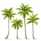 Palm Trees Set. Vector - GraphicRiver Item for Sale