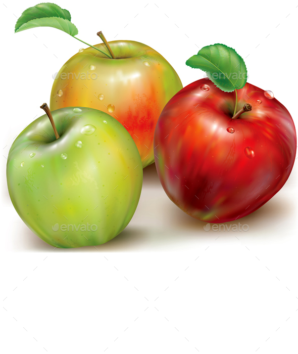 Three Vector of Apples on White Background - Food Objects