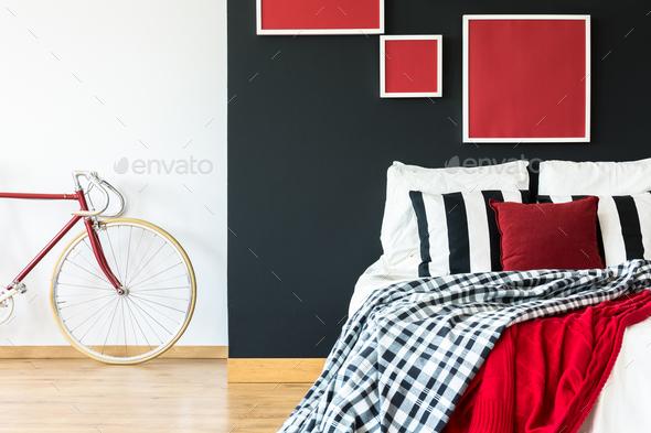 Minimalism and elegance - Stock Photo - Images