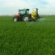 The Protection of Plants by Tractor Spraying a Green Wheat Field