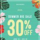 Summer Sale Flyer + Instagram Post - GraphicRiver Item for Sale