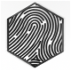 Minimal Fingerprint Reveals