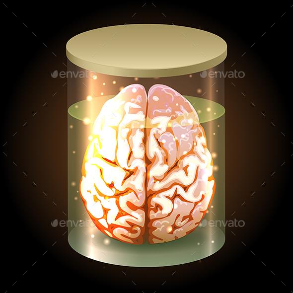 Brain in Jar - Organic Objects Objects