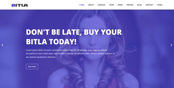 Bitla - Multipurpose Responsive Template - Corporate Site Templates