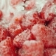 A Stream of Water Pours on Raspberries - VideoHive Item for Sale