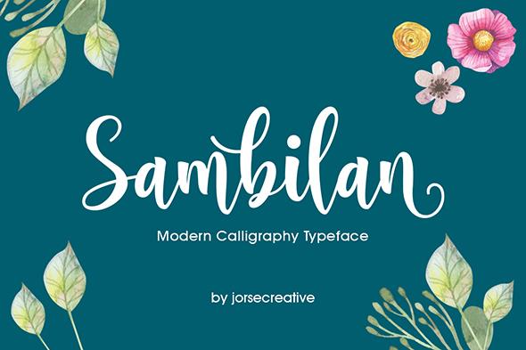 Sambilan Modern Calligraphy Typeface - Script Fonts