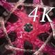 Serpentine Chaos 4K 01
