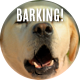 Dog Barking