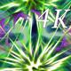 Macro Color 4K 06