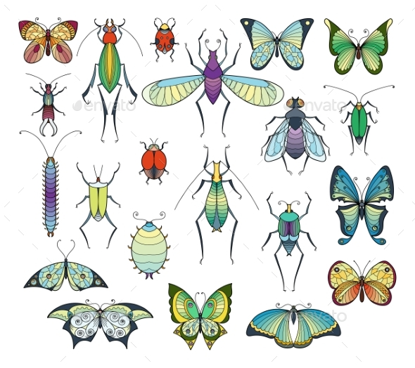 Colored Insects Isolate on White. - Characters Vectors