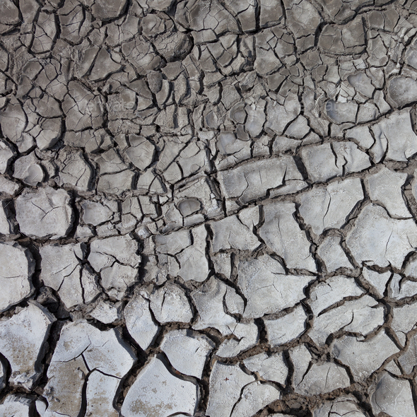 Dry cracked ground - Stock Photo - Images