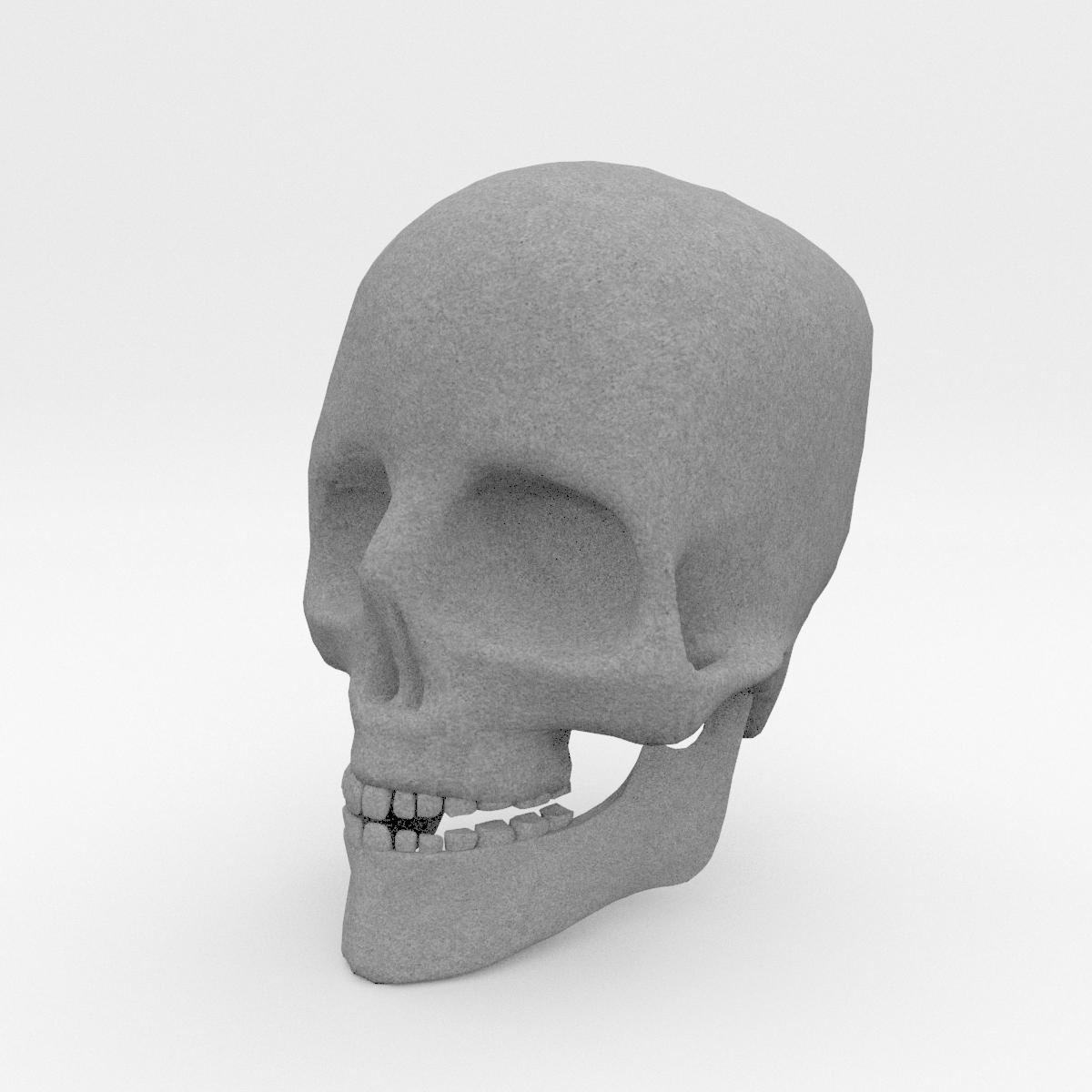 Anatomy Human Skull By Francescomilanese 3docean