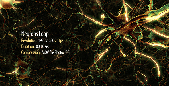 Neurons Loop