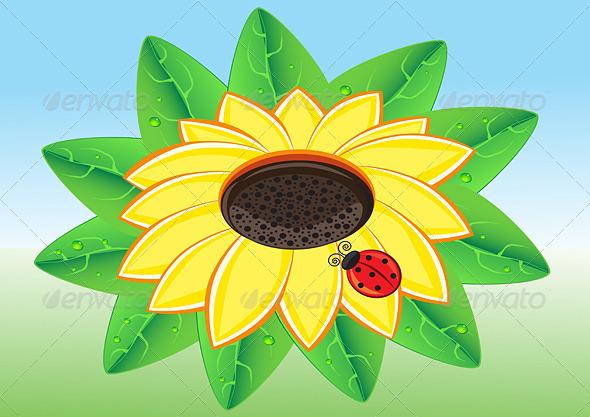 Ladybug on a Sunflowe - Animals Characters