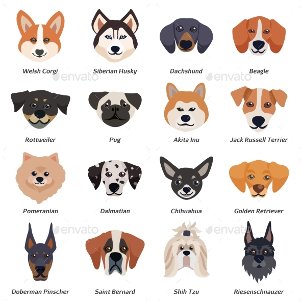 Purebred Dogs Faces Icon Set - Animals Characters