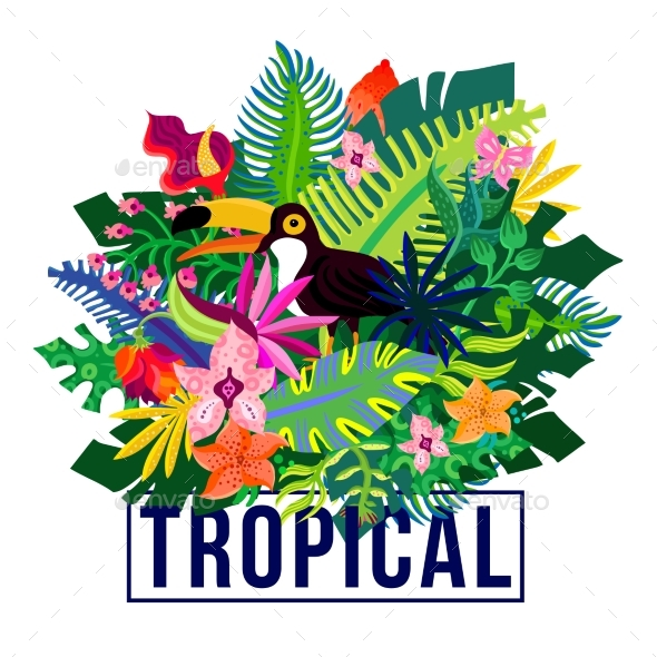 Tropical Exotic Plants Colorful Composition - Flowers & Plants Nature