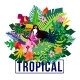 Tropical Exotic Plants Colorful Composition