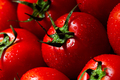 Red tomatoes with water drops - PhotoDune Item for Sale