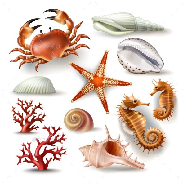Set of Vector Ocean Illustrations - Miscellaneous Vectors