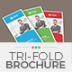 TriFold Brochure Template 05