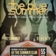 Summer Fest Flyer / Poster - GraphicRiver Item for Sale