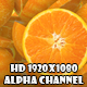 Orange Transition - VideoHive Item for Sale