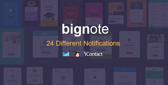 Bignote - 24 Unique Responsive Email Notification set + Online Access - Email Templates Marketing