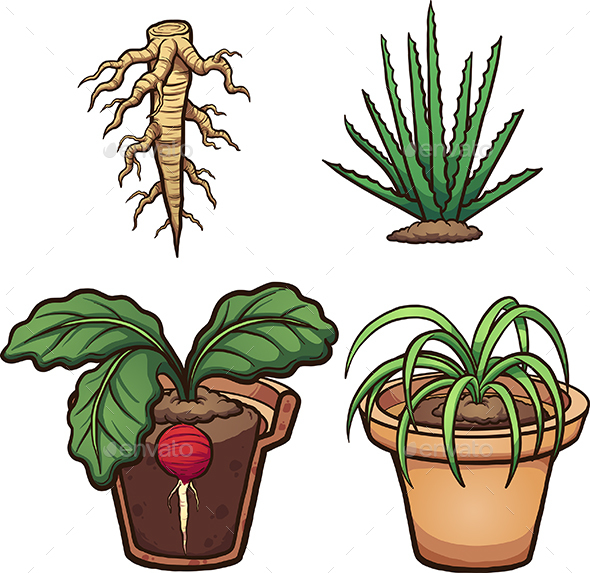 Cartoon Plants - Flowers & Plants Nature