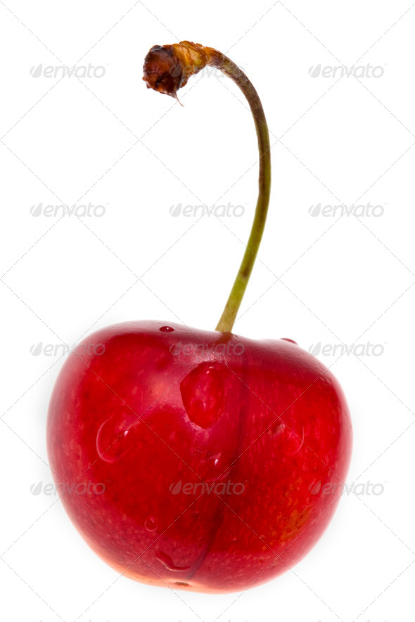 one red sweet cherry - Stock Photo - Images