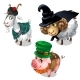Scottish, Wizard, Leprechaun Costume on Animals
