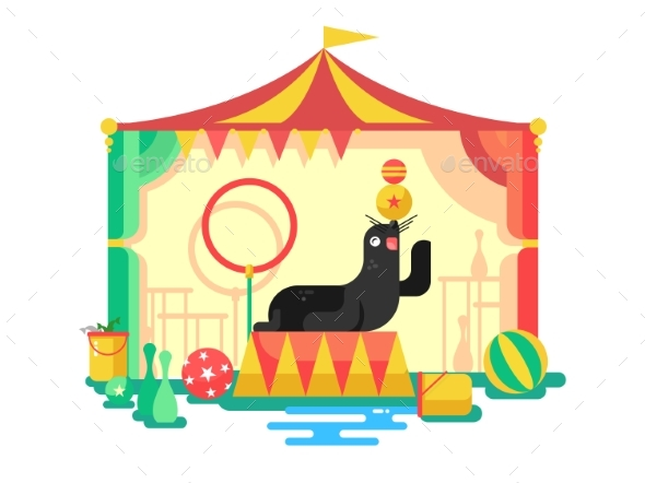 GraphicRiver Fur Seal in a Circus 20287087