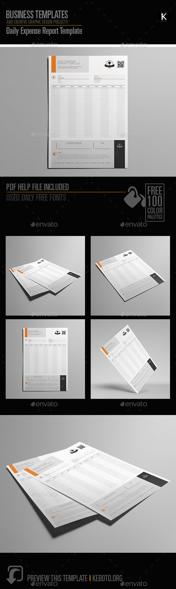 GraphicRiver Daily Expense Report Template 20288592