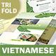 Vietnamese Pho Trifold Menu 3