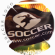 3D Football Flag Logo