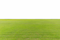 green lawn isolated - PhotoDune Item for Sale