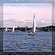 Sail Boats In St.Petersburg 2 - VideoHive Item for Sale