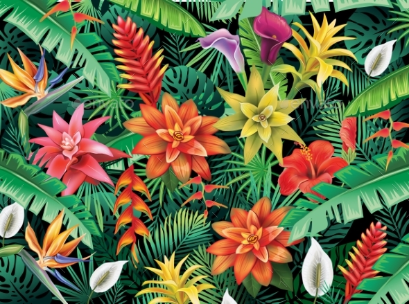 Background From Tropical Flowers - Flowers & Plants Nature
