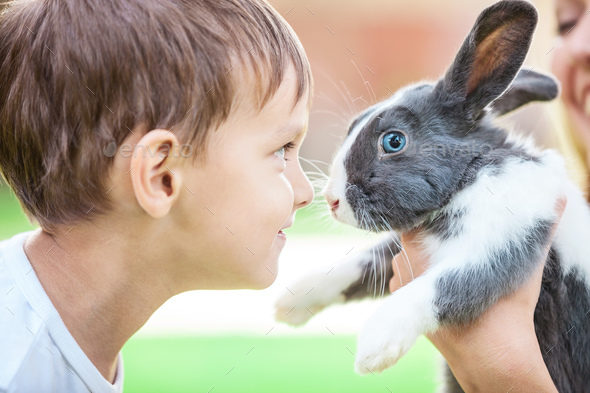 Little boy looking at pet rabbit in mom's hands