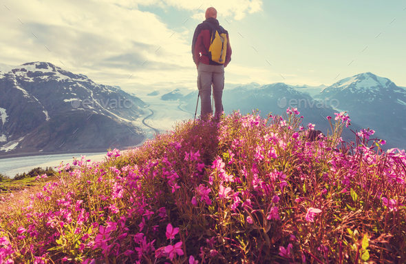 Hike in Salmon glacier - Stock Photo - Images